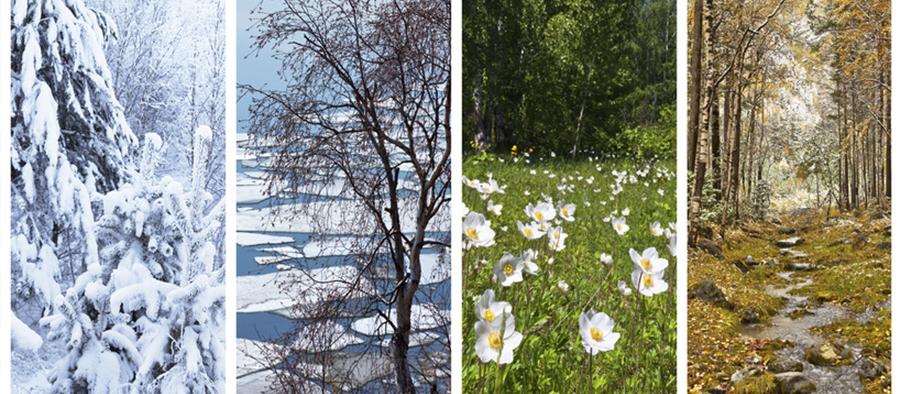 Toutes saisons